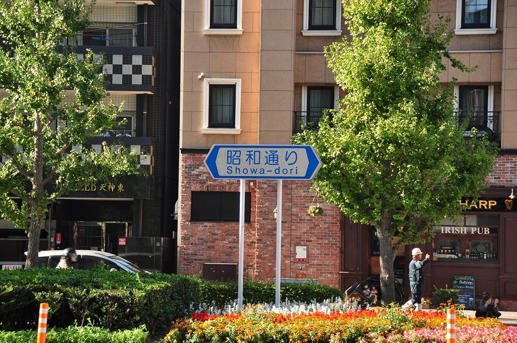 昭和通り(旧50m道路