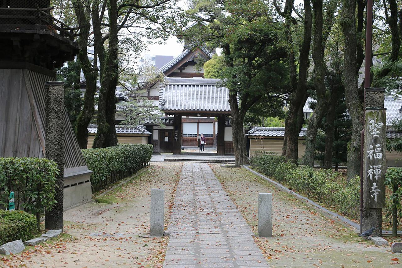 聖福寺の桜2